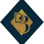 D3 2016 Diamond Only Logo